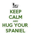 KEEP CALM AND HUG YOUR  SPANIEL - Personalised Poster large
