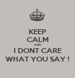 KEEP CALM AND I DONT CARE WHAT YOU SAY ! - Personalised Poster large