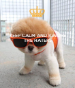 KEEP CALM AND IGNORE THE HATERS    - Personalised Poster large