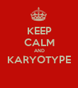 KEEP CALM AND KARYOTYPE  - Personalised Poster large