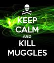 KEEP CALM AND KILL MUGGLES - Personalised Poster large