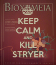 KEEP CALM AND KILL STRYER - Personalised Poster small