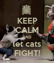 KEEP CALM AND let cats FIGHT! - Personalised Poster large
