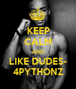 KEEP CALM AND LIKE DUDES- 4PYTHONZ - Personalised Poster large
