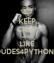 KEEP CALM AND LIKE DUDES4PYTHONZ - Personalised Poster large