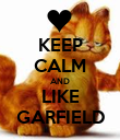 KEEP CALM AND LIKE GARFIELD - Personalised Poster large