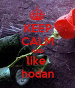 KEEP CALM AND like  hodan - Personalised Poster large