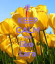 KEEP CALM AND like  Lara - Personalised Poster large