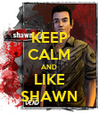 KEEP CALM AND LIKE SHAWN - Personalised Poster large