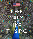KEEP CALM AND LIKE  THIS PIC - Personalised Poster large