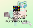 KEEP CALM AND LIVE YOUR FUCKING LIFE - Personalised Poster large