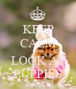 KEEP CALM AND LOOK AT PUPPIES - Personalised Poster large