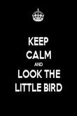 KEEP CALM AND LOOK THE LITTLE BIRD - Personalised Poster large