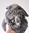 KEEP CALM AND LOVE A RABBIT - Personalised Poster large