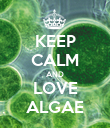 KEEP CALM AND LOVE ALGAE - Personalised Poster large