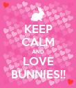 KEEP CALM AND LOVE BUNNIES!! - Personalised Poster large