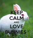 KEEP CALM AND LOVE BUNNIES  - Personalised Poster large
