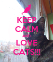 KEEP CALM AND LOVE CATS!!! - Personalised Poster large