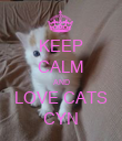 KEEP CALM AND LOVE CATS CYN - Personalised Poster large