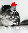 KEEP CALM AND LOVE  CHINCHILAS  - Personalised Poster large