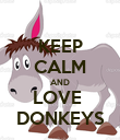 KEEP CALM AND LOVE  DONKEYS - Personalised Poster large