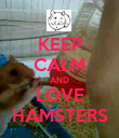 KEEP CALM AND LOVE HAMSTERS - Personalised Poster large