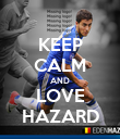 KEEP CALM AND LOVE HAZARD - Personalised Poster large