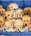KEEP CALM AND LOVE  LABRADORS - Personalised Poster large