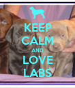 KEEP CALM AND LOVE LABS - Personalised Poster large