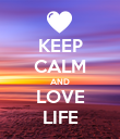 KEEP CALM AND LOVE LIFE - Personalised Large Wall Decal