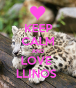 KEEP CALM AND LOVE  LLINOS  - Personalised Poster large