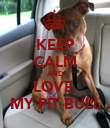 KEEP CALM AND LOVE  MY PIT BULL - Personalised Poster large