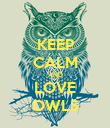 KEEP CALM AND LOVE OWLS - Personalised Poster large