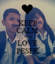 KEEP CALM AND LOVE PESEK - Personalised Large Wall Decal