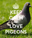 KEEP CALM AND LOVE PIGEONS - Personalised Poster large