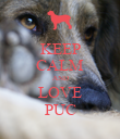 KEEP CALM AND LOVE PUC - Personalised Poster large
