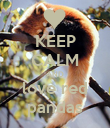 KEEP CALM AND love red pandas - Personalised Poster large