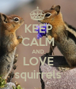 KEEP CALM AND LOVE squirrels - Personalised Poster large