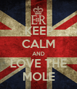 KEEP CALM AND LOVE THE MOLE - Personalised Poster large