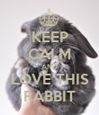 KEEP CALM AND LOVE THIS RABBIT - Personalised Poster large