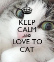 KEEP CALM AND LOVE TO CAT - Personalised Poster large