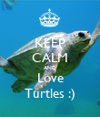 KEEP CALM AND Love Turtles :) - Personalised Poster large
