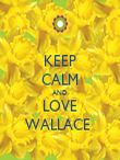KEEP CALM AND LOVE WALLACE  - Personalised Poster large