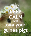 KEEP CALM AND love your  guinea pigs - Personalised Poster large