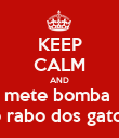 KEEP CALM AND mete bomba  no rabo dos gatos!! - Personalised Poster large