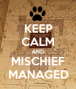 KEEP CALM AND MISCHIEF MANAGED - Personalised Poster large