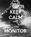 KEEP CALM AND  MONITOR - Personalised Poster large