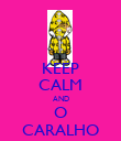 KEEP CALM AND O CARALHO - Personalised Poster large