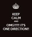 KEEP CALM AND OMG!!!!!! IT'S ONE DIRECTION!! - Personalised Poster large