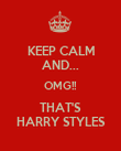 KEEP CALM AND... OMG!! THAT'S HARRY STYLES - Personalised Poster large